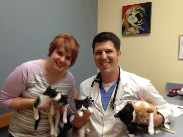 Cary Grove Animal Hospital Dr. Fritz J. Trybus DVM Cary, IL