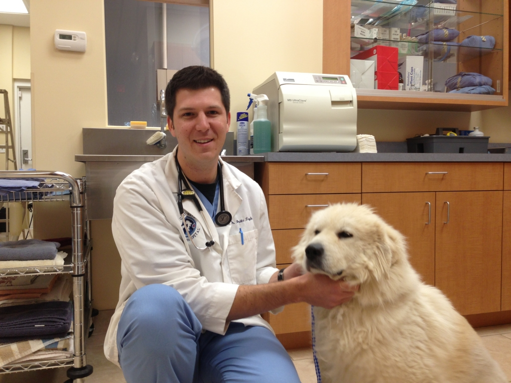 Cary Grove Animal Hospital Dr. Fritz J. Trybus DVM Cary, IL PET SURGERY